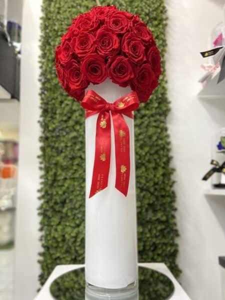 Sole Di Rose Eternal Roses